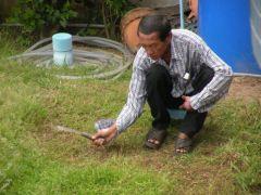 Gräsklippning vid Pantip Resort