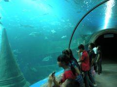 Aquarium i Nong Khai