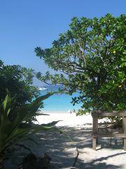 Similan, Island # 4