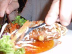 Khao Lak 2008