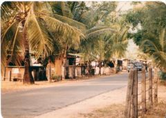 Patong beach 1979