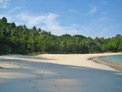 freedomm beach