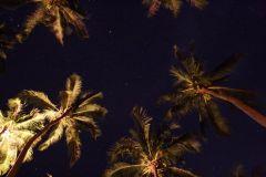 Stars in Koh Hai