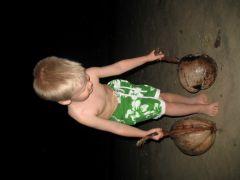 Kokosnötter på stranden!