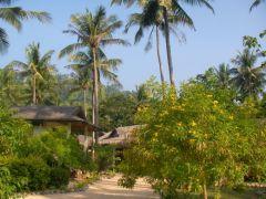 Charlies resort Koh Muuk